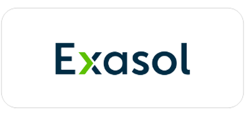 Exasol consulting partner